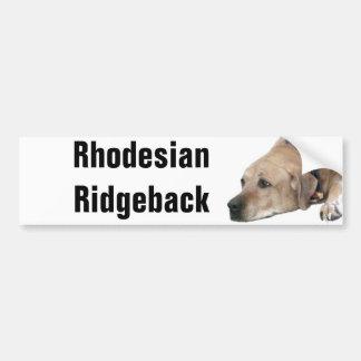 Haustier Rhodesian Ridgeback Hundebild Autoaufkleber