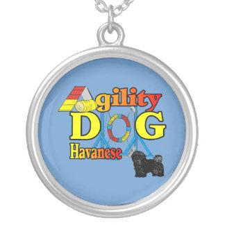 Havanese Agility Versilberte Kette