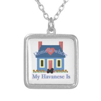 Havanese Zuhause ist Versilberte Kette