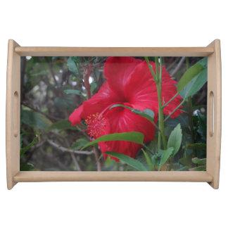 Hawaii-Blumen-Serviertablett Tablett