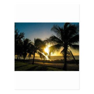 Hawaii-Sonnenuntergang Postkarte