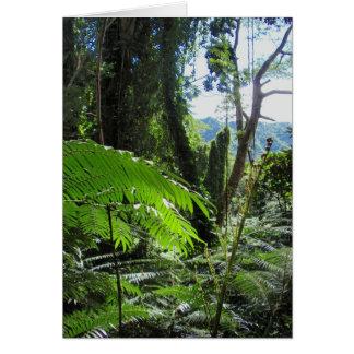 Hawaiische Baum-Farne Karte