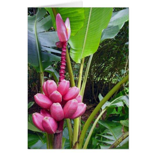 Hawaiische rosa Bananen Grußkarte