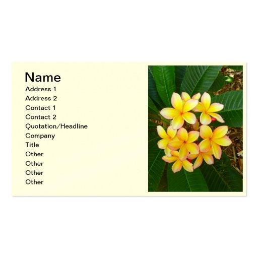 Hawaiischer Frangipani Visitenkarten Vorlage