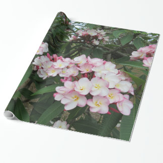 Hawaiischer Plumeria Geschenkpapier