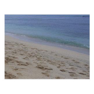 Hawaiischer Strand Postkarte