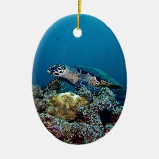 Hawkbill Schildkröte Keramik Ornament