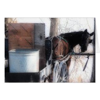 He dort, Orton Effekt, amisches Pferd Karte