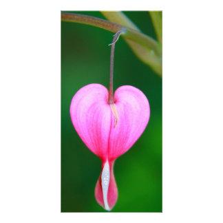 Heart Flower Modèle Pour Photocarte