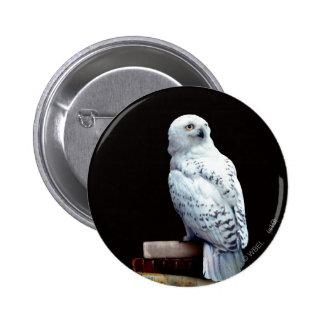 Hedwig sur des livres badge rond 5 cm