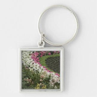 Heide des Rhododendron-(Rhododendron catawbiense) Silberfarbener Quadratischer Schlüsselanhänger
