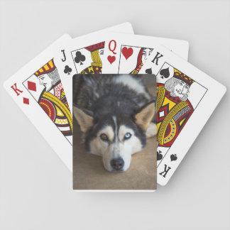 Heiserer Hundespielkarten Spielkarten