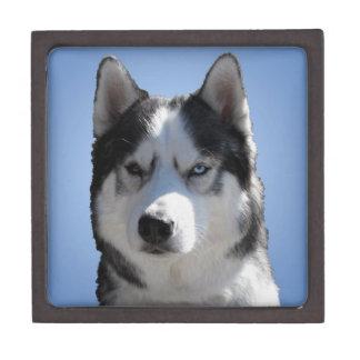 Heiserer Schmuck-Kasten-heiserer Schlitten-Hund Kiste