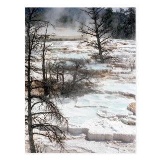 Heiße Quellen in Neuseeland Postkarte