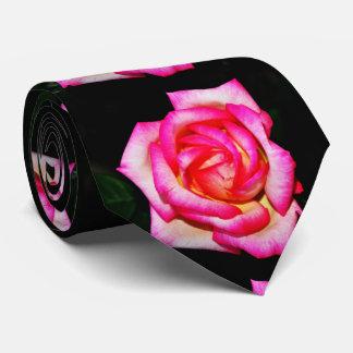 Heißes Rosa-Rose auf schwarzer Krawatte