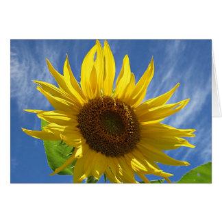 Heitre Sonnenblume Karte