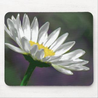 Helle Gänseblümchen-Blume Mousepads
