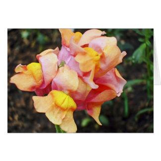 Helle orange Snapdragon Blumen Karte