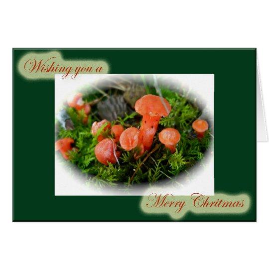 Helle Pilz-Weihnachtskarte Karte