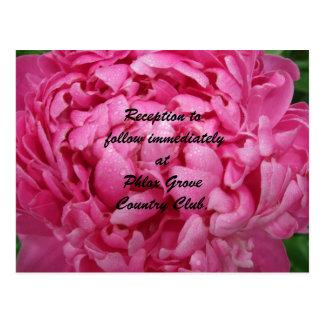 Helle rosa Pfingstrosen-Hochzeits-Empfangs-Karte Postkarte