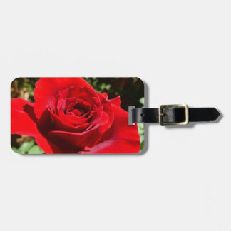 Helle Rosen-Blumen-schönes Blumen Koffer Anhänger