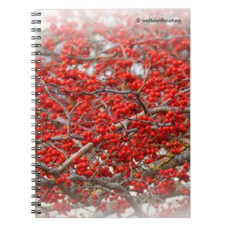 Helle rote Winterberries-Stechpalme-Beeren Notizblock