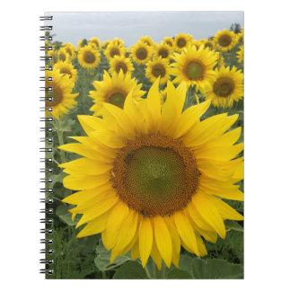 Helles gelbes Sonnenblume-Foto-Notizbuch Spiral Notizblock