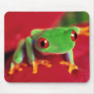 Hellgrüne Frosch-Mäusematte Mousepad