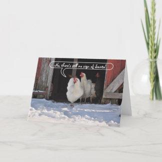 Hens waiting for Santa christmas