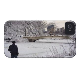Heraus schauen über einem gefrorenen Teich iPhone 4 Cover