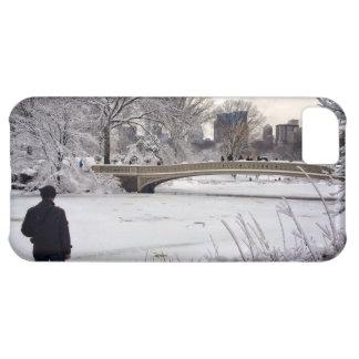 Heraus schauen über einem gefrorenen Teich iPhone 5C Hülle