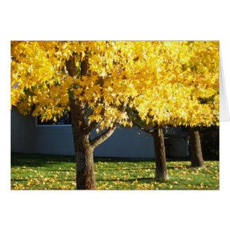 Herbst-Bäume bei Vichy entspringt Erholungsort Karte