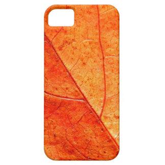 Herbst-Blatt-Nahaufnahme iPhone Se+Fall 5/5S iPhone 5 Schutzhüllen