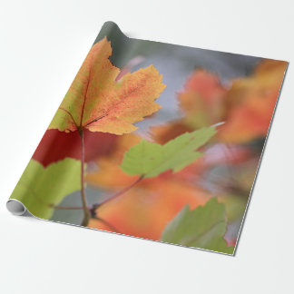 Herbst-Blätter Geschenkpapierrolle