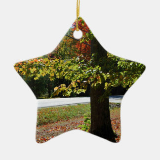 Herbst-Blätter in Maine Keramik Ornament