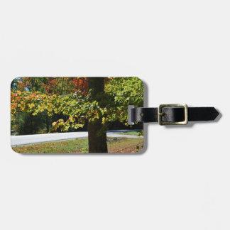 Herbst-Blätter in Maine Kofferanhänger