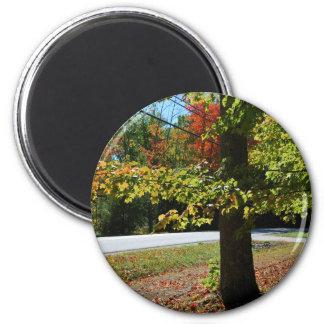 Herbst-Blätter in Maine Runder Magnet 5,7 Cm