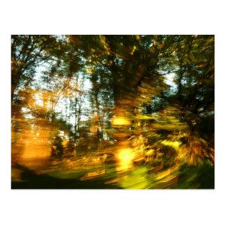 Herbst blenden! postkarte