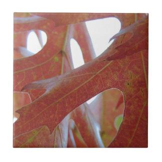 Herbst-Eichen-Blätter Kleine Quadratische Fliese