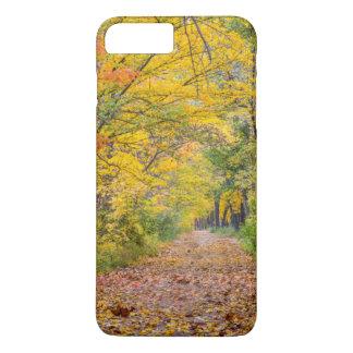 Herbst-Farben am Unabhängigkeits-Staats-Park iPhone 8 Plus/7 Plus Hülle