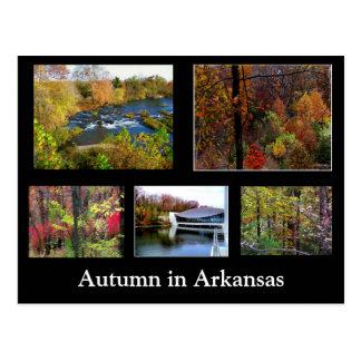 Herbst in der Arkansas-Fotografie-Postkarte Postkarte