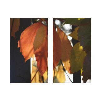 Herbst in Toskana (hochwertiges Foto auf Leinwand) Leinwanddruck