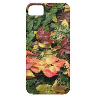 Herbst Laub Hülle Fürs iPhone 5