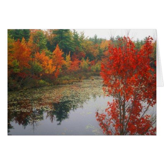 Herbst-Laub in See Grußkarte