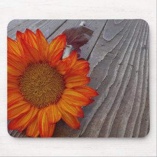 Herbst-orange Sonnenblume-Blüte Mauspad