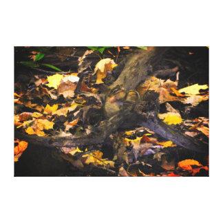 Herbst-Tier-Porträt Leinwanddruck