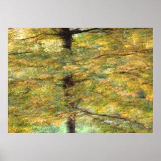 Herbstfarben II Poster