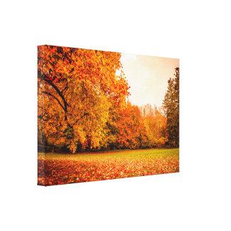 Herbstlandschaft mit bunten Bäumen Leinwanddruck