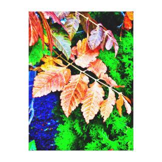 Herbstlaub auf immergrünem Hintergrund Leinwanddruck