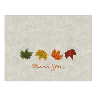 Herbstlaub dankt Ihnen Postkarte